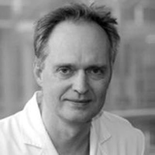 """Theodor Fischlein, MD<br><span class=""""stitreAboutTeam""""></span>"""